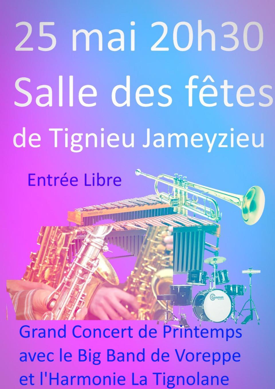 affiche concert harmonie la tignolane 25 mai 2019